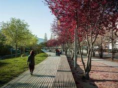 BATLLE I ROIG | SANT CLIMENT STREAM. VILADECANS landschap omgevingsaanleg hout pad zitbank bomen park