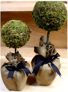 DIY moss topiary -  maybe without the burlap, in a nice little pot instead