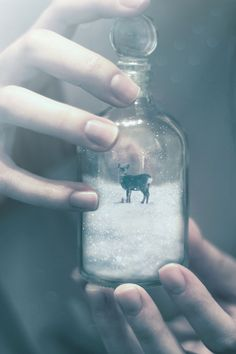 surreal-photo-manipulations-omerika-15
