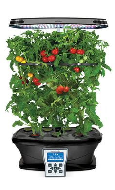 27 Incredible Tower Garden Ideas For Homesteading In 640 x 480