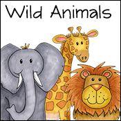 wild animals activities