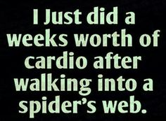 I seriously laughed too hard at this and can't stop! OMG we have webs everywhere on the farm, seen my husband scream like a little girl (well, me too)