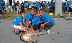 Coco at the Central Broward Regional Park (Lauderhill) offering some good old fashion Dog Therapy to some finisher of the Big Cardio 5K to support 4Kids of South Florida.