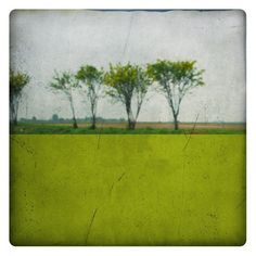 Pole acide (Landscape Photography - Fine Art Print - Country Road - Painting - Color Block - Green) by labokoff on Etsy https://www.etsy.com/listing/55010044/pole-acide-landscape-photography-fine