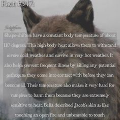 WEBSTA @ twilightfactss - ~I'm going swimming today and every year I regret getting a bikini because the strings are annoying, but they're so pretty-Autumn{#twilightsaga#shapeshifters#werewolves#twifact347}