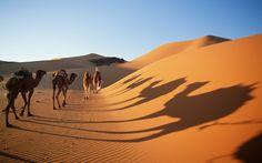 Sahara Desert, The Hottest Desert In The World - Found The World
