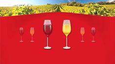 Symposium Wines | Verdens største skål | Casefilm | Manus