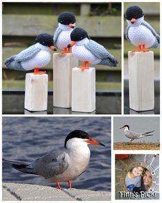 Finn's Pick: Crochet a Common Tern Amigurumi – FREE Pattern | KnitHacker