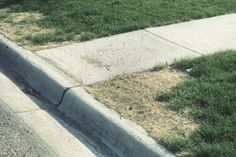 Avoid Dead Grass with Early Spring Lawn Care