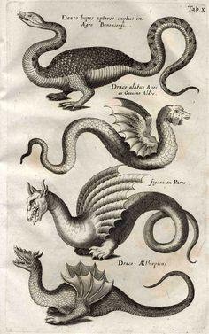 "Ulisses Aldrovandis ""Monstrorum historia"" dragons"