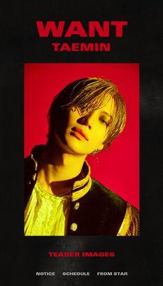 Listen to every Taemin track @ Iomoio Onew Jonghyun, Lee Taemin, Lee Jinki, Kim Kibum, Pop Songs, Latest Albums, Korean Celebrities, Celebs, Kpop