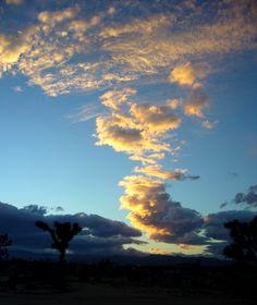 Desert_Twilight.jpg (2112×2511)