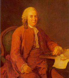 """Linneo era molto religioso e credeva che studiando ciò che Dio aveva creato fosse possibile comprendere la saggezza divina. A suo parere lo studio della natura rivelerebbe l'ordine divino della creazione di Dio, e il lavoro del naturalista era quello di costruire una """"classificazione naturale"""" per rilevare quest'ordine nell'universo. Si rileva, quindi, che il pensiero del naturalista era di tipo fissista, come poi quello di Cuvier elaborato nella sua teoria delle catastrofi, in contrasto con…"""