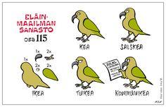 Eläinlajit 115 Learn Finnish, Finnish Words, Finnish Language, Hilarious, Funny, Finland, Vocabulary, Beautiful Pictures, Feelings