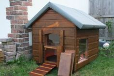 Upcycled dog kennel tortoise house!                                                                                                                                                                                 More