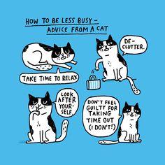 jetbluehumankinda: Meow we're talkin'.Courtesy of cartoonist/pug owner @gemmacorrell.