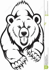 Easy Coloring Pages Tribal Tattoo Yahoo Image Search Results Bear Face Drawing Bear Drawing Grizzly Bear Drawing