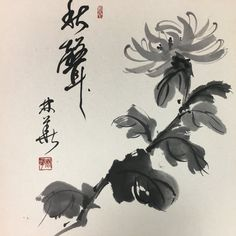 Japanese Calligraphy, Calligraphy Art, Paper Board, Chrysanthemum Flower, Japanese Painting, Painting Art, Paintings, Chinese Art, Asian Art