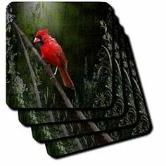 Wild Brid - Cardinal Bird in Spring - Art Home Decor - Set Of 8 Coasters - Soft by 3dRose LLC, http://www.amazon.com/dp/B00816TMYU/ref=cm_sw_r_pi_dp_HhOQrb1R158N0