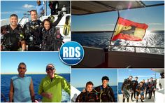 RDS: 12/2015 North + Brothers
