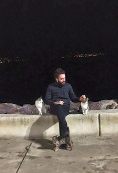 İstanbul.' un Kedileri
