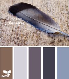 gray to blue, touch of brown.