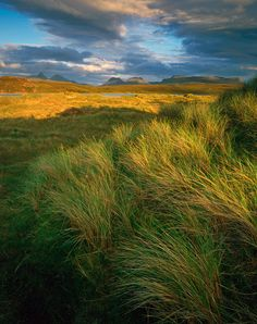 Achnahaird, summer evening | Into The Light by David Ward. Inverpolly, Scotland.
