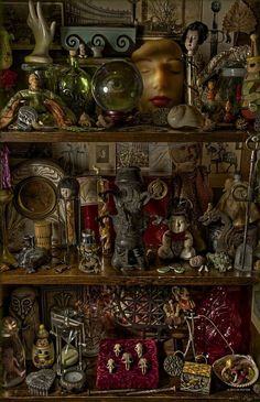 Curiosity shelves and oddities Curiosity Cabinet, Curiosity Shop, Cabinet Of Curiosities, Arte Obscura, Witch Aesthetic, Gothic House, Assemblage Art, Shadow Box, Witchcraft