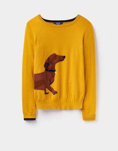 Dachshund sweater.