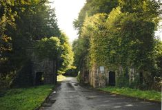 Entrance to the Castle Caldwell estate (C) D Gore :: Geograph Ireland Auld Lang Syne, My Family History, Northern Ireland, Ancestry, Outlander, Entrance, Places To Visit, Country Roads, Genealogy