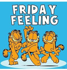 images of garfield Friday Good Morning Friday, Feel Good Friday, Good Morning Funny, Friday Weekend, Friday Feeling, Morning Humor, Good Morning Quotes, Friday Morning Quotes, Happy Weekend