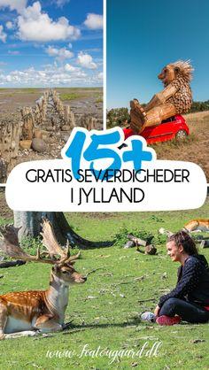 15+ gratis seværdigheder i Jylland - TeaTougaard.dk Denmark, Museum, Animals, Animales, Animaux, Animal, Animais, Museums