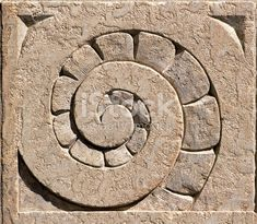 Ammonite-like spiral set in stone stone. Close up of an architectural feature carved into a Winnipeg building. Pebble Stone, Stone Art, Pebble Art, Spirals In Nature, Fibonacci Spiral, Architectural Features, Ammonite, Fractal Art, Sacred Geometry