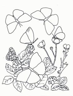 16 Best Butterfly Coloring Book Images Libri Da Colorare Disegni
