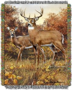 Show off your love for the wilderness with this Hautman Brothers Royal Pair Woven Tapestry Throw Blanket. Enjoy the outdoors with this super soft tapestry that captures a pair of roaming deer and a fun fringe trim. Deer Photos, Deer Pictures, Animal Paintings, Animal Drawings, Art Drawings, Deer Wallpaper, Deer Art, Beautiful Dogs, Animals Beautiful