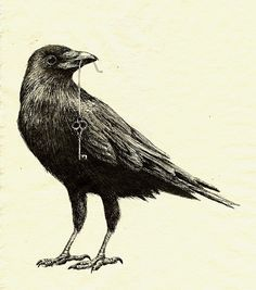 Thick shiny ribbon in raven's mouth, blowing in wind. Ribbon attached to large skeleton key with raven perched on key.