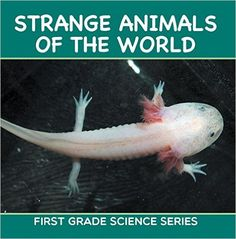 Strange Animals Of The World : First Grade Science Series: First Grade Books (Animal Encyclopedia For Kids) - Kindle edition by Baby Professor. Children Kindle eBooks @ Amazon.com.