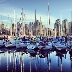 I've been posting my photos of Paris, Zurich and Venice from my trip, here's one of Vancouver - every city seems to have something special. Show me yours! #Home