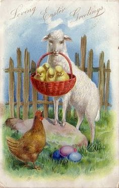 Lamb Delivers Basket of Chicks to Mama Hen ~ Vintage Easter postcard Easter Lamb, Easter Bunny, Easter Eggs, Vintage Cards, Vintage Postcards, Easter Greeting Cards, Easter Pictures, Diy Ostern, Easter Holidays
