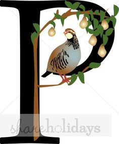 Partridge in a Pear Tree with Letter P