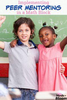 Peer mentoring can h