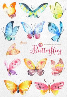 Butterflies Watercolour: 12 Separate hand painted clipart, diy elements…