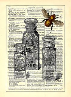 Honey Bee With Honey Jars Dictionary Book Print by StayGoldMedia