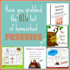 Homeschool Freebies http://www.blessedbeyondadoubt.com/a-big-list-of-home-school-freebies/