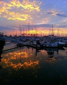 Sunset at Marina Village when my boat is docked.  The sky was spectacular.  Mission Bay, San Diego, California!