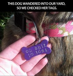 my kind of dog tags!
