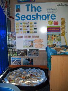 The Seashore classroom display photo - Photo gallery - SparkleBox