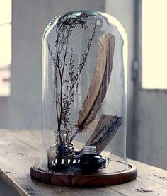 Home-Styling: Trend Alert - Glass bell jars * Alerta Tendência - Campanulas de Vidro
