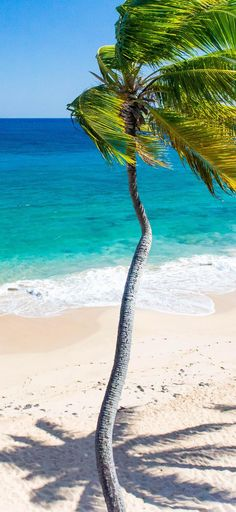 Antigua Caribbean Travel Guide – Best Travel images in 2019 Beautiful Places To Travel, Beautiful Beaches, Antigua Caribbean, Exotic Beaches, Beach Design, Ocean Beach, Beach Babe, Beaches In The World, Beach Trip