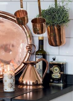 Copper increases the charm of a kitchen. As well as succulant love.